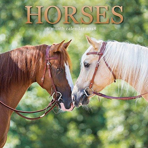 Discount 2018 Horses Mini Wall Calendar for sale
