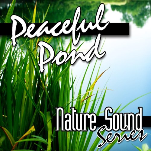 Peaceful Pond (Nature Sounds)