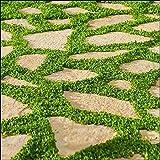 Baldur-garten Winterharter Bodendecker Lippia 'summer Pearls ... Begehbare Bodendecker Rasenersatz Pflanzen