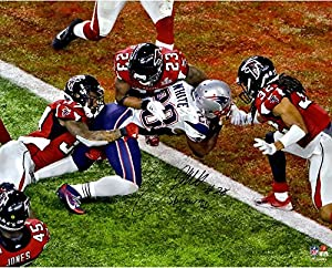 "James White New England Patriots Autographed 16"" x 20"" Super Bowl LI Champions Game-Winning Touchdown Photograph with ""SB GW TD"" Inscription - Fanatics Authentic Certified"