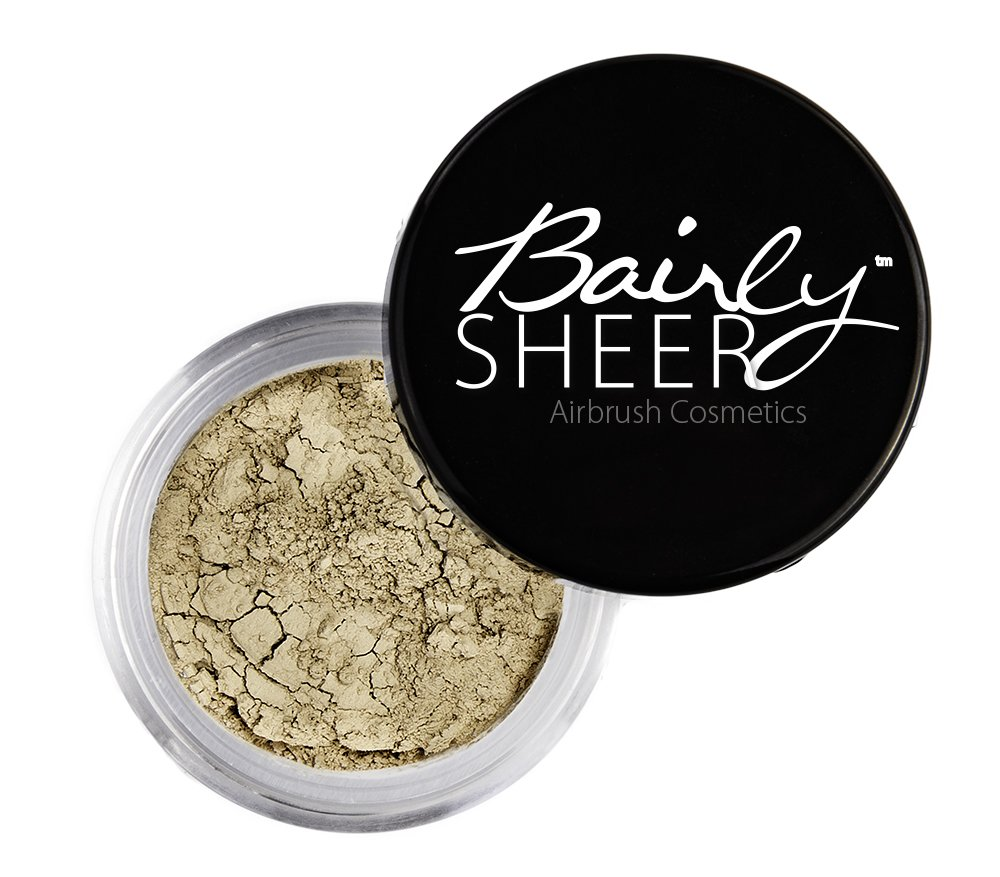 Sure Stay Setting Brush by bairly sheer #6