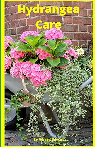 Hydrangea Care: How To Care For Hydrangeas For Beginners - Easy Home Gardening