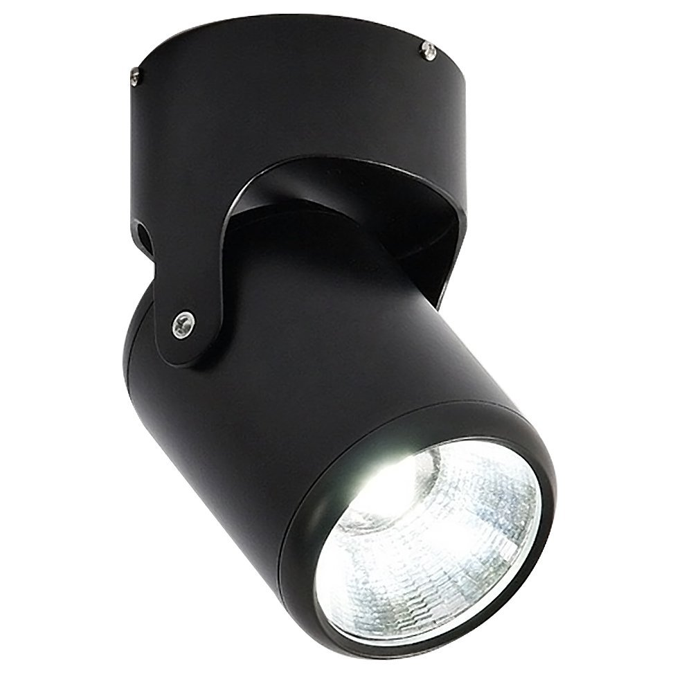 Aolyty Modern LED Ceiling Spotlight Downlight White Light 6000K 360°Adjustable Wall Accent Spotlight for Decoration Indoor Use Multiple Color (12W, Black)