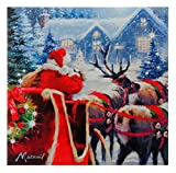 Raz Reindeer Best Deals - Raz Holiday Christmas 24