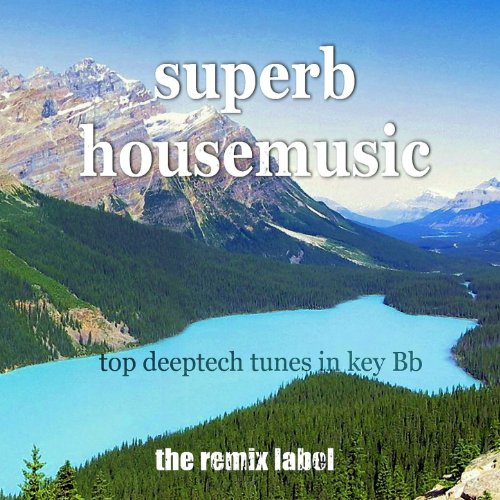 Superb Housemusic (Top Deeptech Tunes In Key Bb)