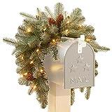 CC Christmas Decor 36'' Pre-Lit Arctic Spruce Mailbox Swag - Clear LED Lights