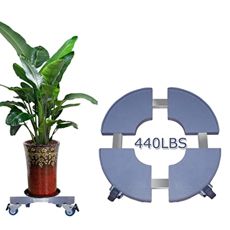 Amazon Com Plant Caddy With Wheels Large Plant Caddy Plant Dolly