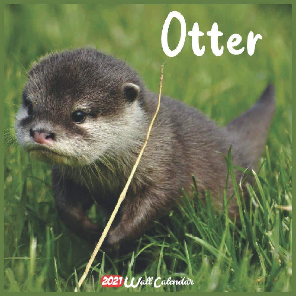 Otter Calendar 2021