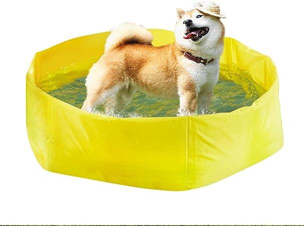 Piscinas y Juegos acuáticos Piscina para Gatos Bañera para Perros bañera Verano Golden Retriever Plegable Perros Grandes Teddy Perro Mascota (Color : Yellow, Size : D: 90cm/35 Inch): Amazon.es: Hogar