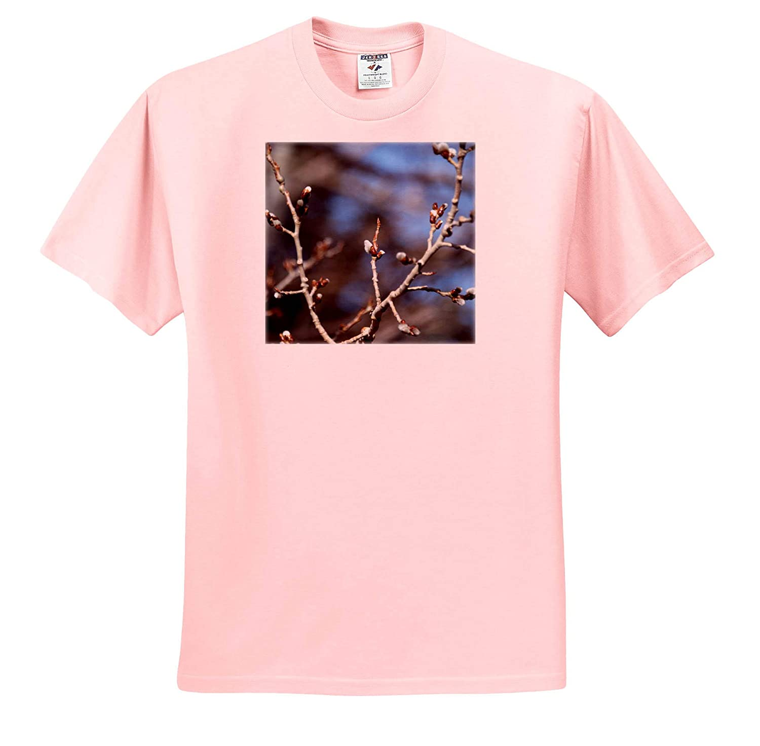T-Shirts Aspen Buds Tree Blossoms Coming Out of an Aspen Tree in Springtime 3dRose Jos Fauxtographee