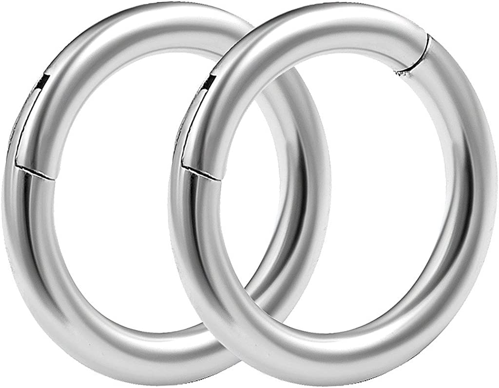 bodyjewellery 2pcs 14g 5/16 Hinged Segment Rings Septum Norstril Seamless Clicker Hoop Cartilage Nose Lip Ear Tragus Helix Surgical Steel