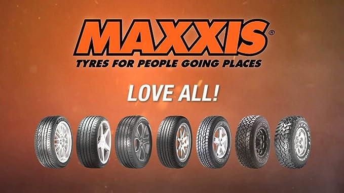 Maxxis Ap2 All Season Xl Fsl M S 205 50r17 93v Ganzjahresreifen Auto