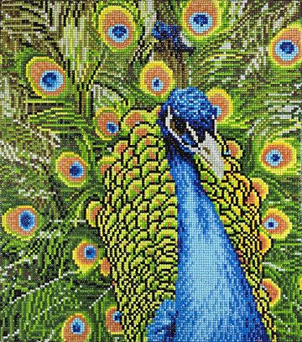 (Leisure Arts-Diamond Art by Leisure Arts - Powered by Diamond Dotz - 5D DIY Diamond Painting Kit - Peacock Design)