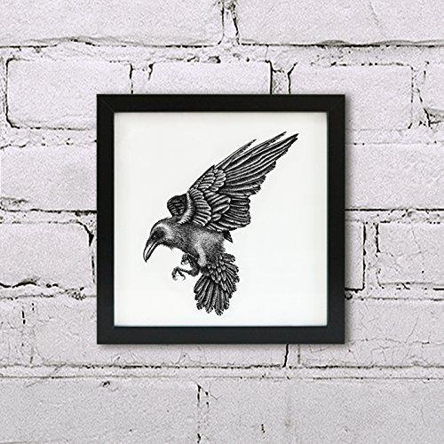 Raven print - Framed bird art illustration: Amazon.co.uk: Handmade