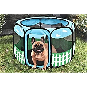 (Large) – Pet Portable Foldable Play Pen Exercise Kennel Dogs Cats Indoor/outdoor Tent For Click on image for further info.
