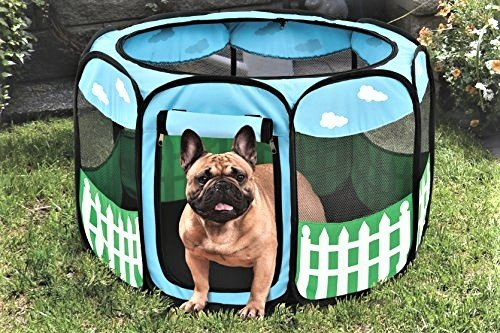Pet Portable Foldable Play Pen Exercise Kennel Dogs Cats Indoor/outdoor tent for small medium large pets Animal Playpen with Pop up mesh cover great for travel LARGE,BLUE/GREEN from Etna