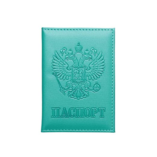 Anjuley - Funda Protectora de Piel sintética para Pasaporte ...