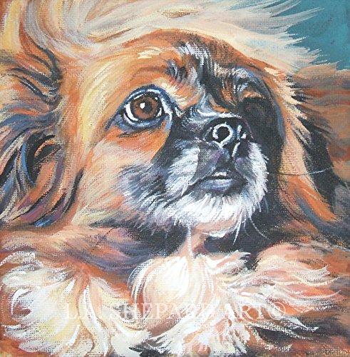 A Tibetan Spaniel Dog art portrait print of an LA Shepard painting 8x8