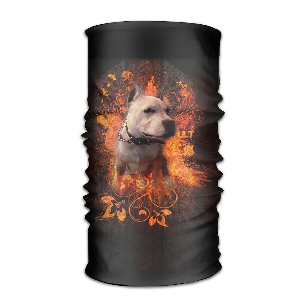 Magic Headwear Dogs Bull American Outdoor Scarf Headbands Bandana Mask Neck Gaiter Head Wrap Mask Sweatband