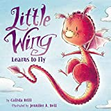 Little Wing Learns to Fly