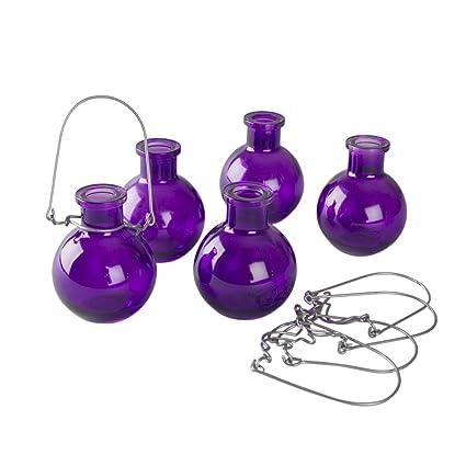 Amazon 5 Count Transparent Glass Vases With Hangers Purple