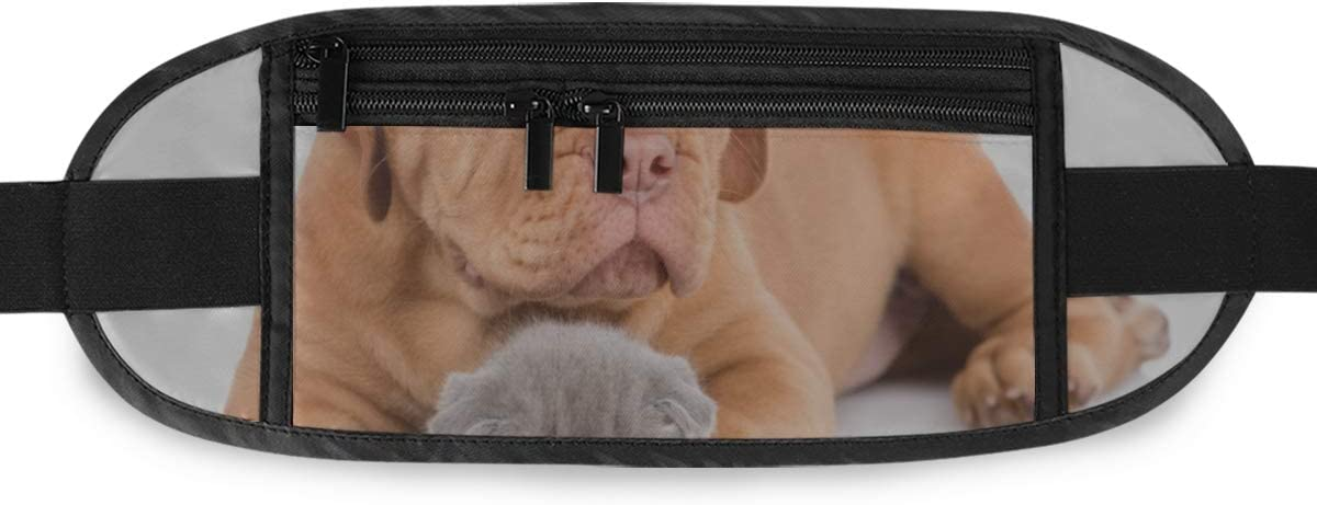 Travel Waist Pack,travel Pocket With Adjustable Belt Bordeaux Puppy Dog Embracing Sleeping Kitten Running Lumbar Pack For Travel Outdoor Sports Wal