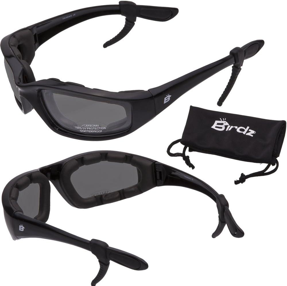 FREE Rubber Ear Locks Birdz Oriole Motorcycle Padded Glasses SMOKE Anti Fog
