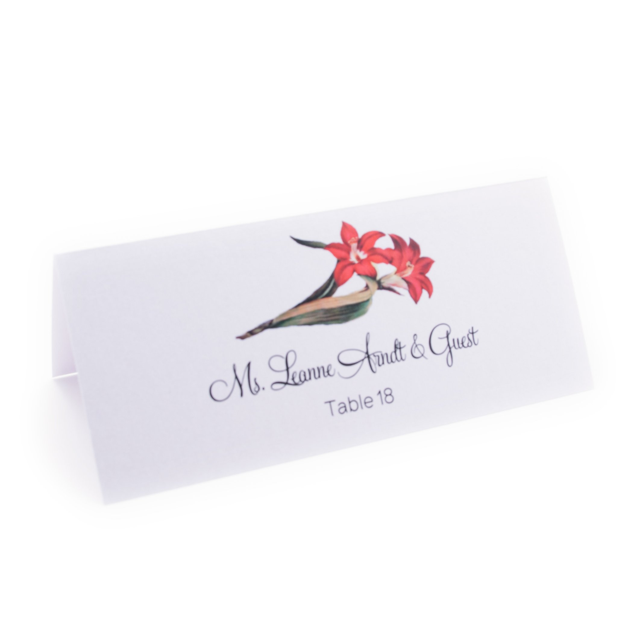 Flower Place Cards, Assorted Designs, Pearl White, Set of 375 by Documents and Designs