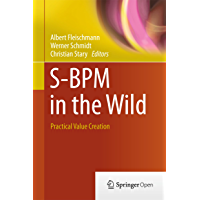 S-BPM in the Wild: Practical Value Creation (English Edition)