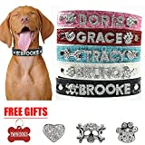 Twin Dogs Personalized Leather Dog Collar - FREE 32 Rhinestone Letters, FREE Skull, Heart and Paw Charms, FREE Bone ID Tag (S: 10'' - 13'', Black)