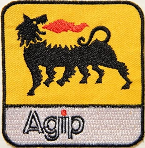 Agip Aceite de motor Logo F1 coche de carreras camiseta chaqueta Patch Sew iron on bordado disfraz: Amazon.es: Coche y moto