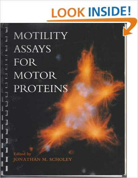 Motility Assays for Motor Proteins