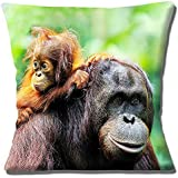 Cute Orangutan and Baby Photo Printed - 16 (40cm) Pillow Cushion Cover by Cushions Corner