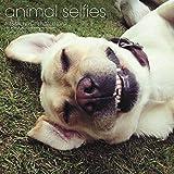 Animal Selfies Wall Calendar (2017)