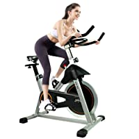 ATIVAFIT Indoor Cycling Bike Stationary 40 lbs Flywheel Cycle Bike with Ipad Mountfor Home Cardio Gym Workout