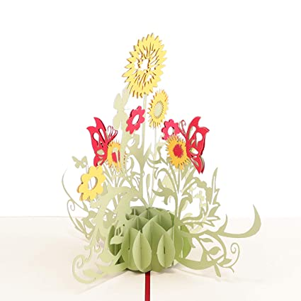 Amazon Paper Spiritz Sunflower Pop Up Birthday Christmas
