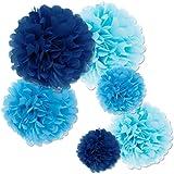 Fecedy 18pcs Tissue Paper Pom Poms Flower Ball for Wedding,Festival,Party Decoration (Blue)