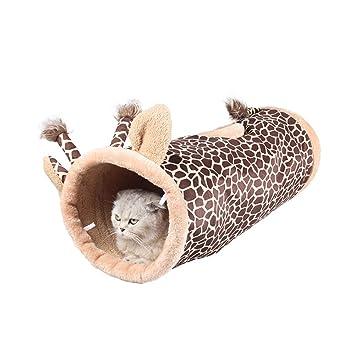 petit tube de chatte