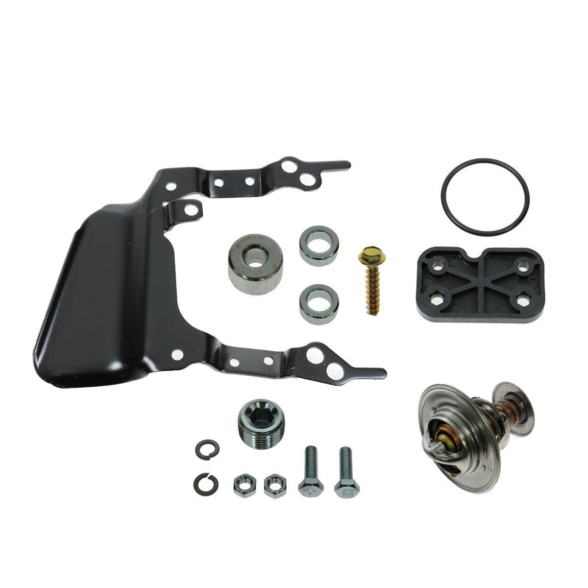 Intake Manifold W Thermostat Gaskets Kit New For Ford Lincoln Town Car Location Mercury 46l V8 Automotive