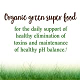 Garden of Life Vegan Green Superfood Powder - Raw