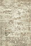 Vintage Traditional Overdyed Cream 4' x 6'-Feet St. Johns Collection Area rug - Living Dinning Room Bedroom Rugs and Carpets