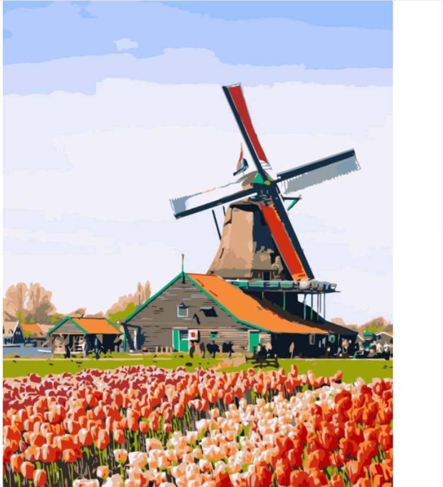 QAZZSF Molino De Viento Tulipán Amsterdam Países Bajos Pintura De ...