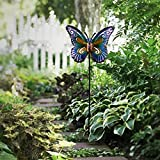 """Hannah's Cottage 28.7"""" Decorative Butterfly Garden Stake, Metal Stake With Solar Lights For Garden, Patio, Backyard and Outdoor,Outdoor Paradise (Purple and Blue) Review"""