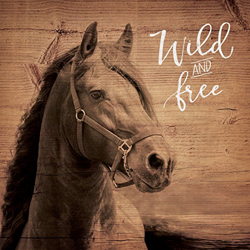 P. GRAHAM DUNN Wild & Free Horse Brown 5.5 x 5.5 Solid Wood Plank Wall Plaque Sign ()