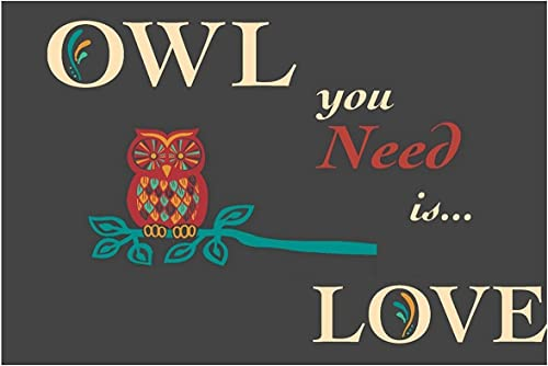 SUN-Shine Doormat with Owl You Need is Love Print Entrance Rug Floor Indoor Outdoor Door Mat 18x30in