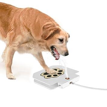 TJW Bebedero Fuente para Mascotas,Fuente De Agua para Perro, Gato, Dispensador de