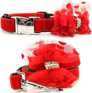"product image for Diva-Dog 'Mrs Claws' Custom Medium & Large Dog 1"" Wide Dog Collar with Plain or Engraved Buckle, Matching Leash Available - M/L, XL"