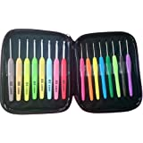 JISTL Crochet Hooks Set,Crochet Hooks Knitting Needles,Eye Blunt Needles Crochet Needles Set with Case,Ergonomic Handle Colorful Plastic Handles Knitting Needles Weave Yarn Case 16