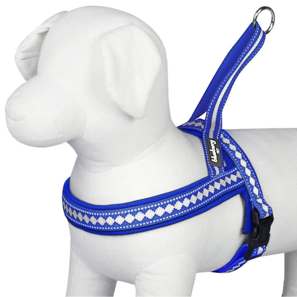 Blueberry Pet 7 Colors Soft & Comfy 3M Reflective Jacquard Padded Dog Harness, Chest Girth 25.5'' - 31.5'', Palace Blue, M/L, Adjustable Harnesses for Dogs by Blueberry Pet (Image #2)