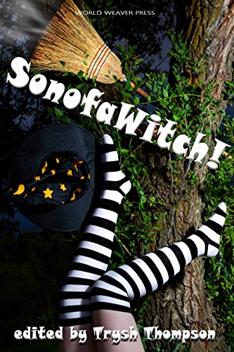 No one is perfect—not even a witch… but they are pretty darn close. Get six funny stories of magic spells gone wrong in this 6-in-1 bundle:  SonofaWitch!